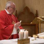Papa: sementes dos mártires enchem a terra de novos cristãos