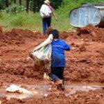 Semana da Criança no Santuário Nacional alerta sobre trabalho infantil